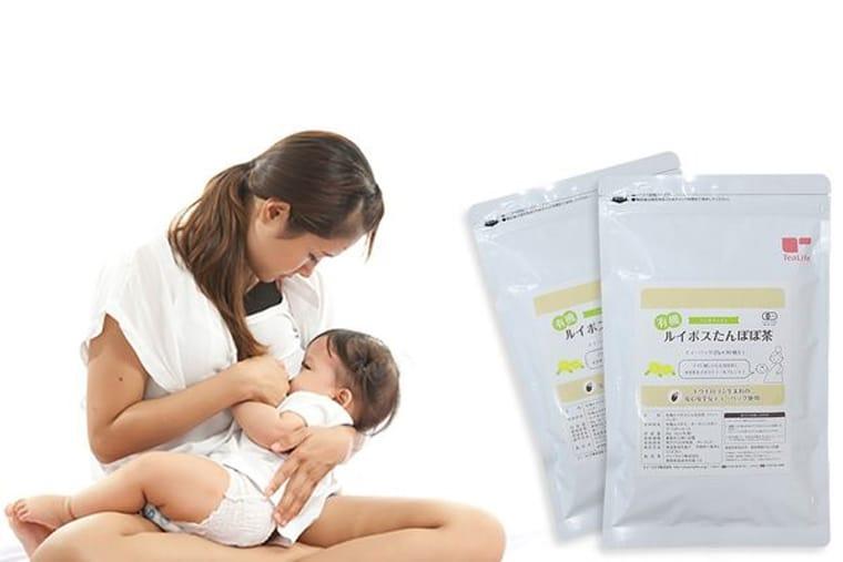 Trà lợi sữa Tealife có những thành phần thiên nhiên, rất an toàn