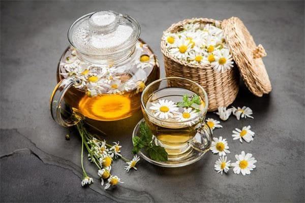 Trà hoa cúc được nhiều người sử dụng