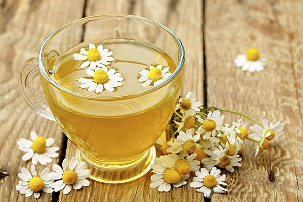 Trà hoa cúc rất tốt cho sức khỏe con người