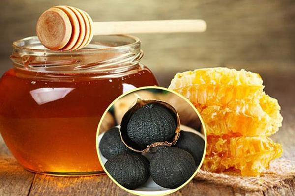 Dược liệu có thể kết hợp mật ong