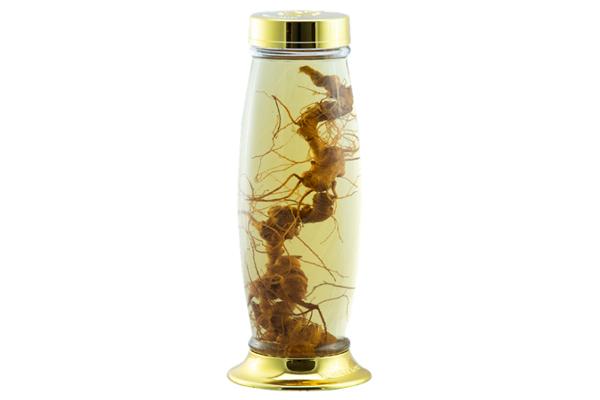 Sử dụng sâm Ngọc Linh ngâm rượu để uống hàng ngày
