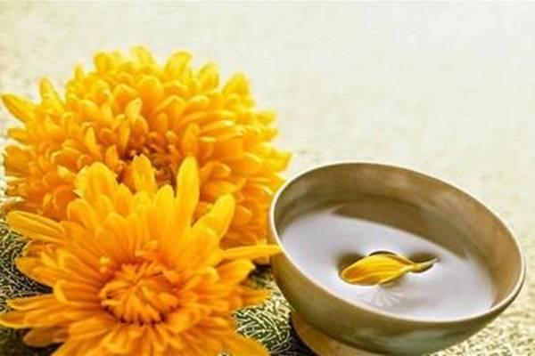 Điều trị sâu răng bằng hoa cúc