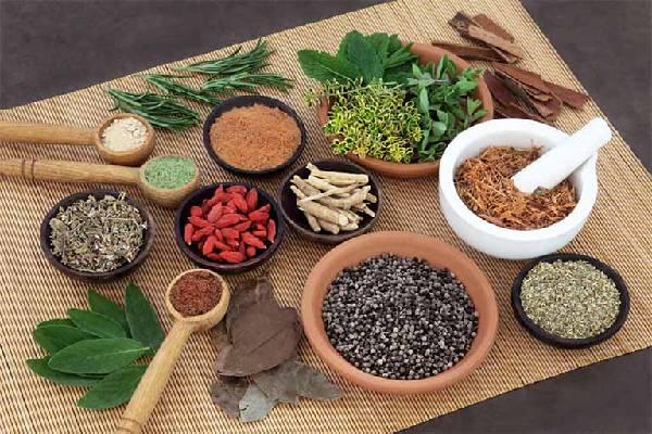 Đông y dùng các thảo dược từ thiên nhiên để chữa bệnh