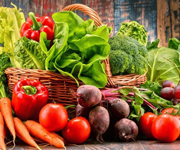 Chú ý chế độ ăn uống khi chữa trị tổ đỉa