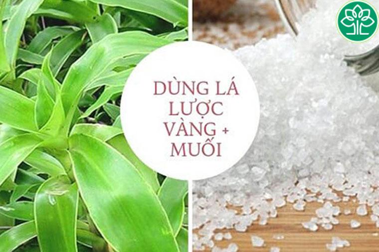 Muối & cây lược vàng chữa viêm amidan hiệu quả