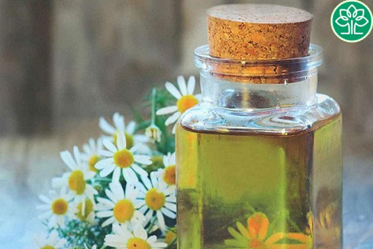 Nên chú ý lựa chọn dầu mù u rõ nguồn gốc xuất xứ để đảm bảo hiệu quả chữa trị