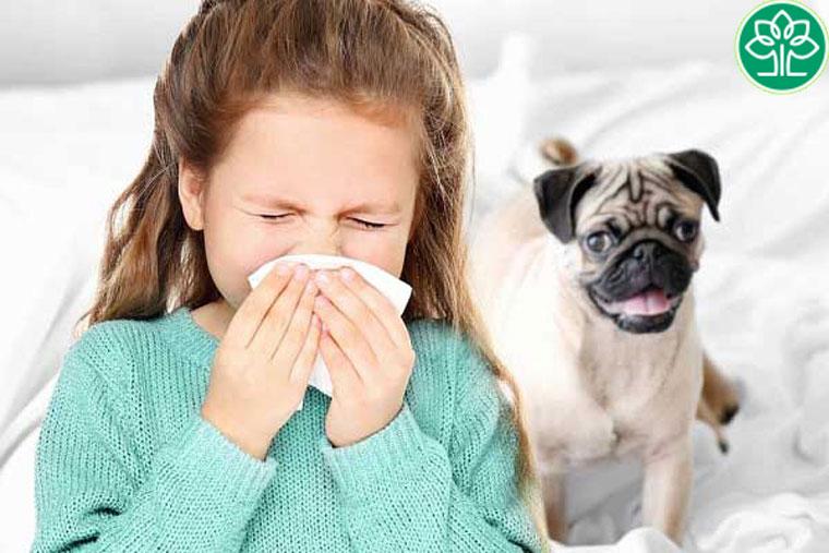 Hạn chế nuôi chó mèo trong nhà nếu người nhà có tiền sử mắc viêm da cơ địa