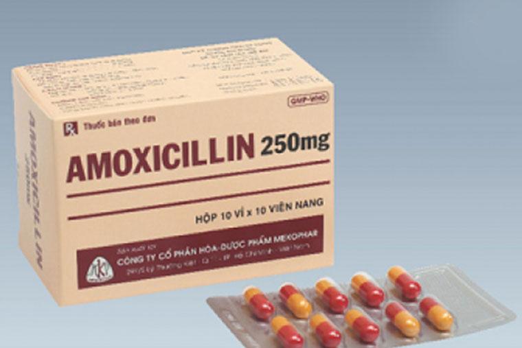 Thuốc kháng sinh chữa viêm amidan Amoxicilin 250mg