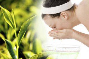Trị bệnh mề đay mẩn ngứa bằng lá trà xanh tươi