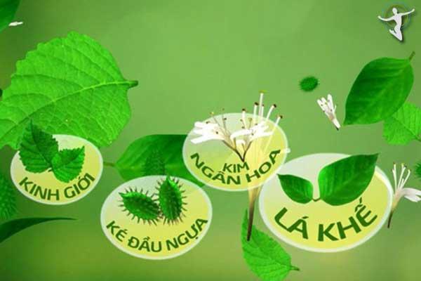 Một số loại lá dùng để tắm giúp trị bệnh nổi mề đay