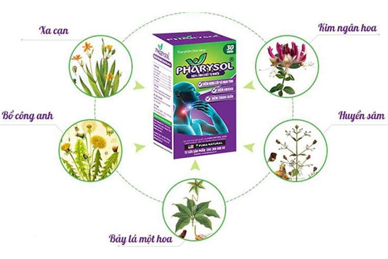 Thành phần thuốc pharysol