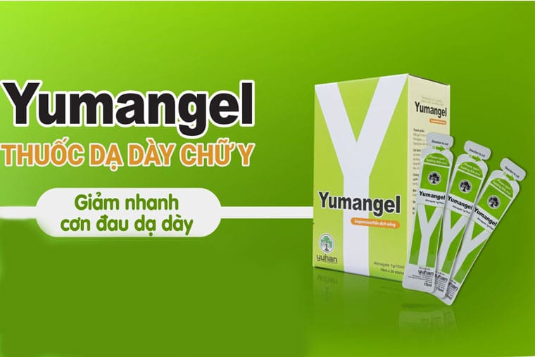 Thuốc dạ dày chữ y (thuốc Yumangel)