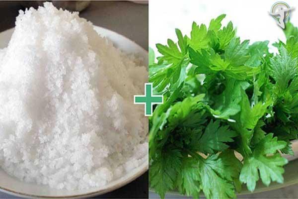 Sử dụng hỗn hợp muối và ngải cứu để điều trị mề đay